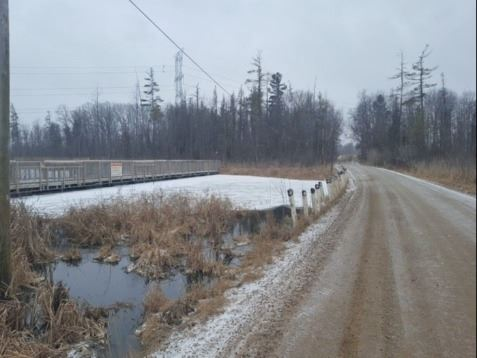 Road Right of Way After Removal of Invasive Phragmites