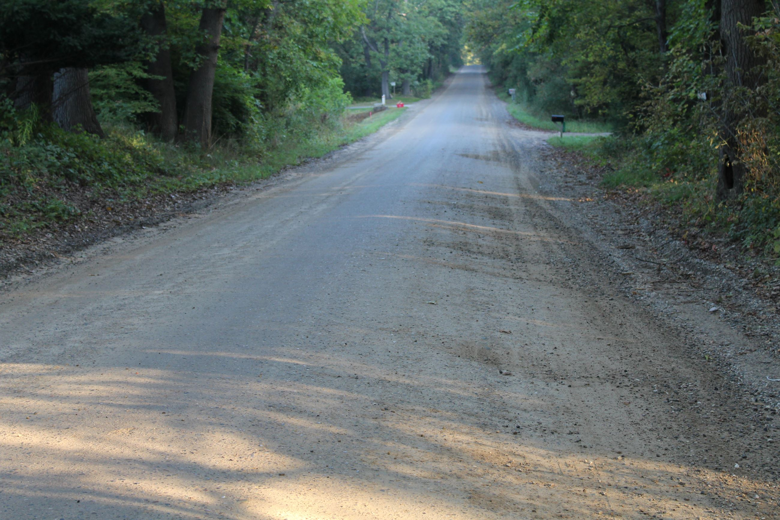 Barron Road south of Grange Hall Road (gravel road photo)